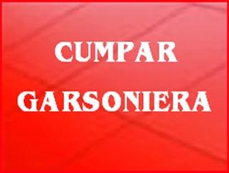 cumpar-garsoniera_609.jpg