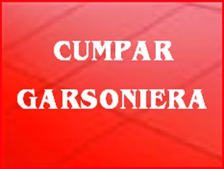 cumpar-garsoniera_84.jpg