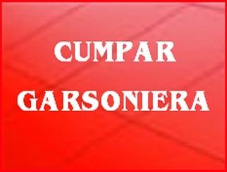 Cumpar garsoniera in zonele: Dristor, Vitan - Olimpia, Titan, 1 Decembrie, Baba Novac, Campia Libertatii