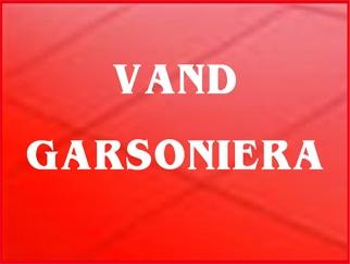 vand-garsoniera_418.jpg