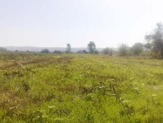 vanzare-teren-site_193.jpg